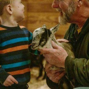 Petting Zoo at Country Roads Family Fun Farm - Stotts City, MO
