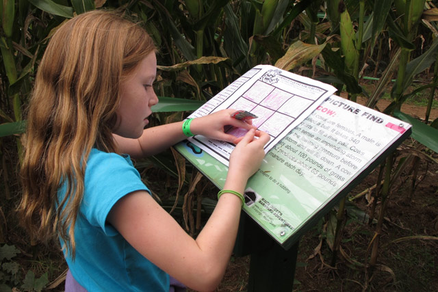 Corn maze activity station - Fun in the corn maze