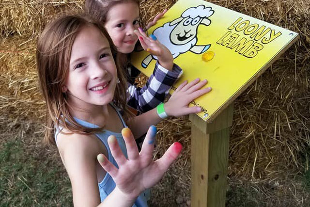 Activity stations in the hay bale maze