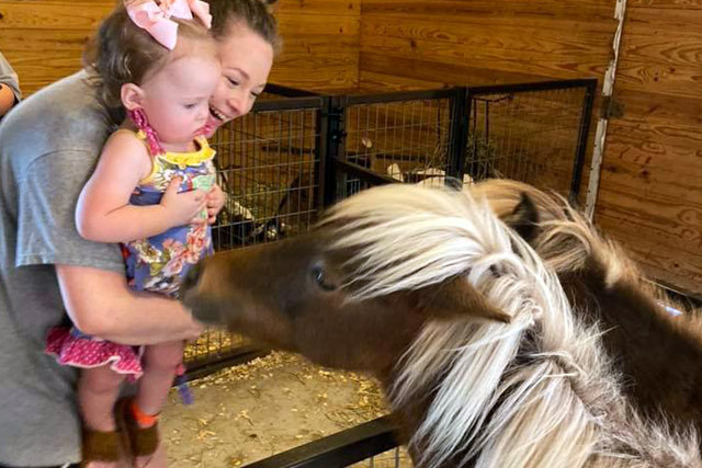 Visiting the Ponies at the Petting Zoo - Stotts City, MO