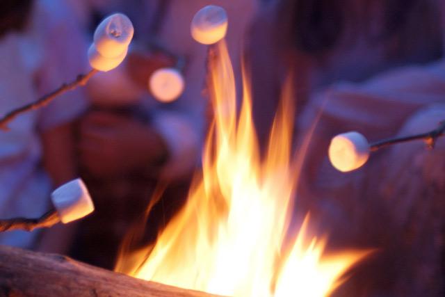Bonfire at Christmas on the Farm