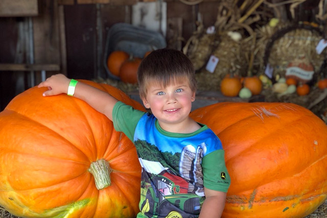 Giant Pumpkins at Country Roads - Stotts City, MO