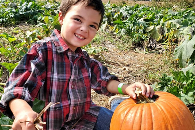 Pumpkin Patch at Country Roads - Stotts City, MO